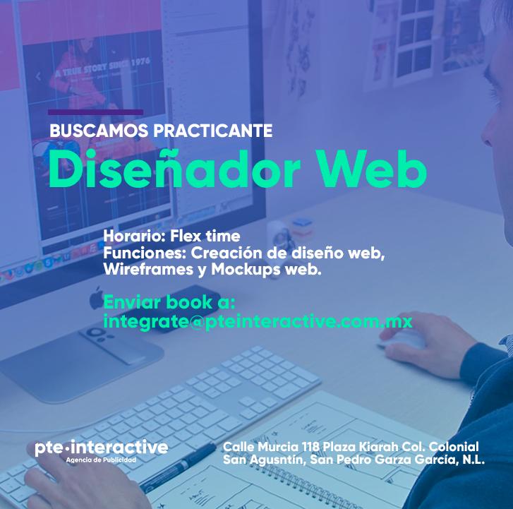 Practicante Diseñador Web